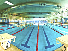 SWIM - intervals @ Healthstream Gardens Point | Brisbane | Queensland | Australia