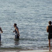 Redcliffe swimming